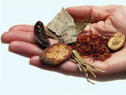 Việc sử dụng thuốc từ thảo dược để điều trị từ đông y đang được nhiều người tin dùng