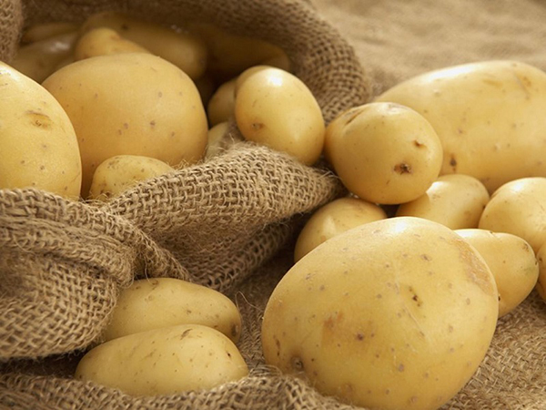 Khoai tây chứa rất nhiều vitamin C